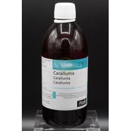 EPS Caralluma - Flacon 500 ml - EPS phytostandard - phytoprevent